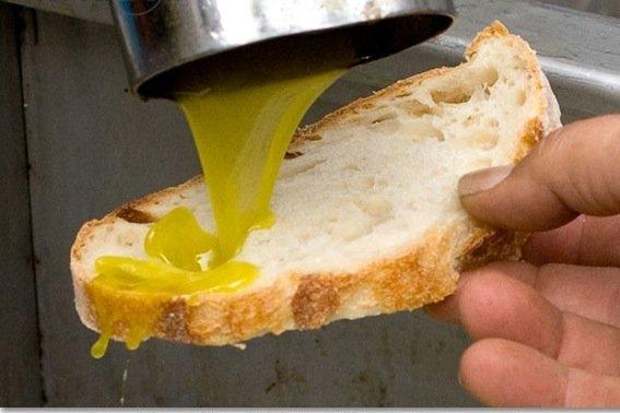 https://www.ragusanews.com/resizer/resize.php?url=https://www.ragusanews.com//immagini_articoli/16-11-2014/1416167736-clima-crolla-la-produzione-di-olio-siciliano.jpg&size=750x500c0