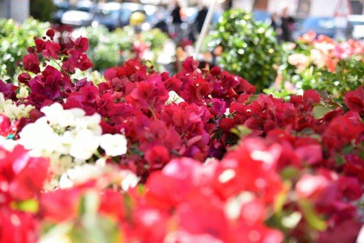 https://www.ragusanews.com/resizer/resize.php?url=https://www.ragusanews.com//immagini_articoli/18-03-2016/1458339460-0-modica-per-tre-giorni-capitale-delle-piante-e-dei-fiori.jpg&size=750x500c0