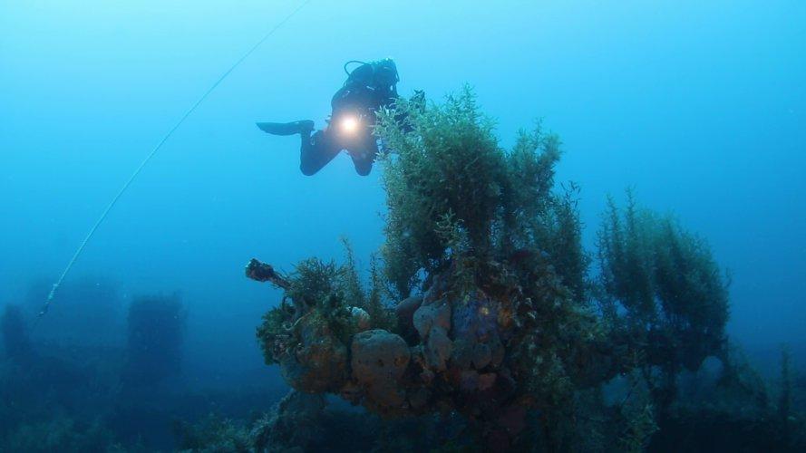 https://www.ragusanews.com/resizer/resize.php?url=https://www.ragusanews.com//immagini_articoli/20-02-2018/1519129823-1-nave-seconda-guerra-mondiale-canale-sicilia-foto.jpg&size=889x500c0