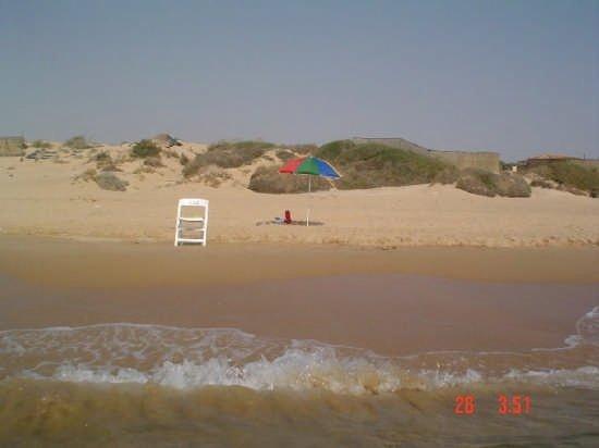 https://www.ragusanews.com/resizer/resize.php?url=https://www.ragusanews.com//immagini_articoli/22-05-2015/1432331525-0-nuovi-appetiti-sulla-spiaggia-di-randello.jpg&size=667x500c0