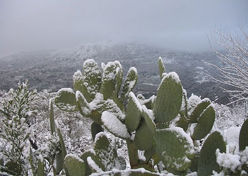 https://www.ragusanews.com/resizer/resize.php?url=https://www.ragusanews.com//immagini_articoli/22-12-2014/1419285150-0-turismo-sicilia-e-sardegna-ai-primi-posti-anche-in-inverno.jpg&size=702x500c0