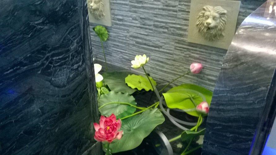 https://www.ragusanews.com/resizer/resize.php?url=https://www.ragusanews.com//immagini_articoli/22-12-2017/1513951068-6-ilufa-sushi-grande-qualita-ambiente-elegante-foto.jpg&size=891x500c0
