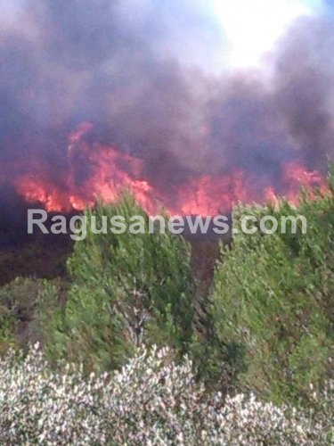 https://www.ragusanews.com/resizer/resize.php?url=https://www.ragusanews.com//immagini_articoli/25-07-2018/1532528941-2-riprende-incendio-bosco-pietro-arrivo-canadair.png&size=375x500c0