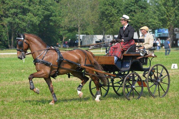 https://www.ragusanews.com/resizer/resize.php?url=https://www.ragusanews.com//immagini_articoli/25-08-2015/1440493097-0-san-giovanni-a-cavallo.jpg&size=750x500c0