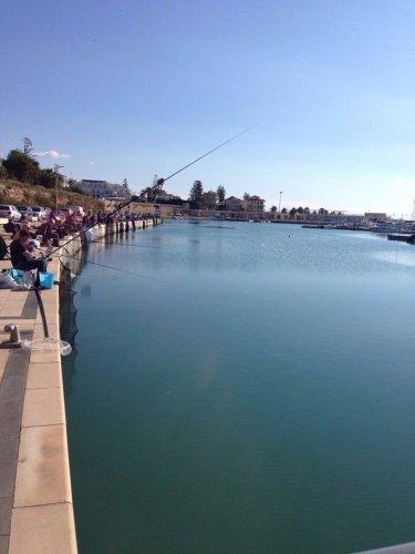 https://www.ragusanews.com/resizer/resize.php?url=https://www.ragusanews.com//immagini_articoli/26-10-2014/1414344036-0-canne-da-pesca-al-porto-di-marina-di-ragusa.jpg&size=375x500c0