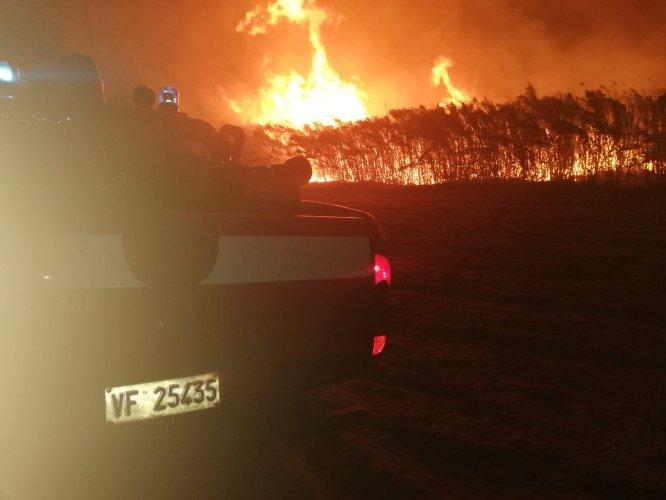 https://www.ragusanews.com/resizer/resize.php?url=https://www.ragusanews.com//immagini_articoli/27-08-2018/1535359423-1-incendio-vicino-giostre-marina-ragusa.jpg&size=666x500c0
