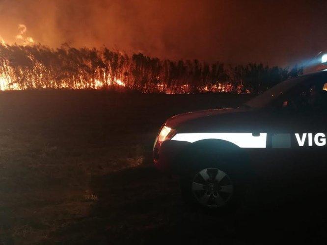 https://www.ragusanews.com/resizer/resize.php?url=https://www.ragusanews.com//immagini_articoli/27-08-2018/1535359498-1-incendio-vicino-giostre-marina-ragusa.jpg&size=666x500c0