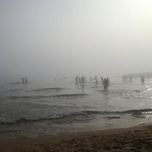https://www.ragusanews.com/resizer/resize.php?url=https://www.ragusanews.com//immagini_articoli/29-07-2017/1501349277-1-arrivata-lupa-nebbia-spiaggia-iblei-video.jpg&size=500x500c0