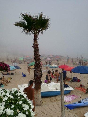 https://www.ragusanews.com/resizer/resize.php?url=https://www.ragusanews.com//immagini_articoli/29-07-2017/1501357305-1-arrivata-lupa-nebbia-spiaggia-iblei-video.jpg&size=375x500c0