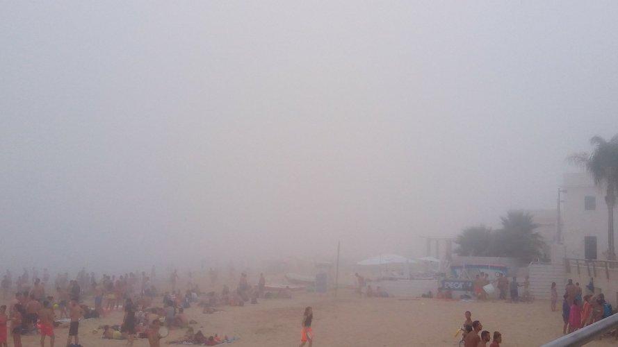 https://www.ragusanews.com/resizer/resize.php?url=https://www.ragusanews.com//immagini_articoli/29-07-2017/1501362274-1-arrivata-lupa-nebbia-spiaggia-iblei-video.jpg&size=889x500c0