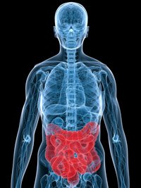 https://www.ragusanews.com/resizer/resize.php?url=https://www.ragusanews.com//immagini_articoli/30-03-2016/1459370478-0-chirurgia-modica-asportato-raro-tumore-del-retto-in-laparoscopia.jpg&size=375x500c0