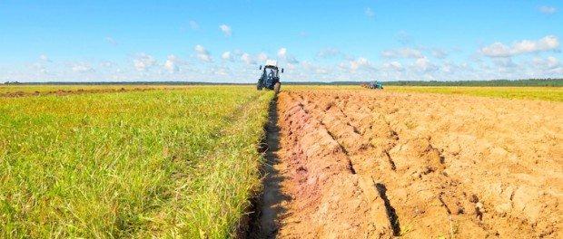 https://www.ragusanews.com/resizer/resize.php?url=https://www.ragusanews.com//immagini_articoli/31-01-2015/1422703573-0-imu-agricola-la-linea-del-tar.jpg&size=1174x500c0